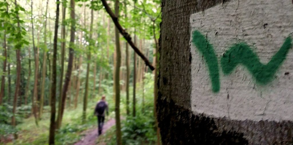Westerwaldsteig - Bloggerwandern Rheinland-Pfalz 2016