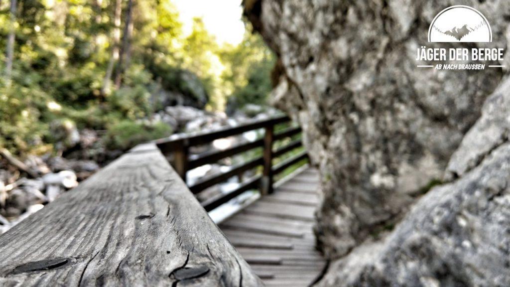 Gut ausgebaute Wege im Zauberwald