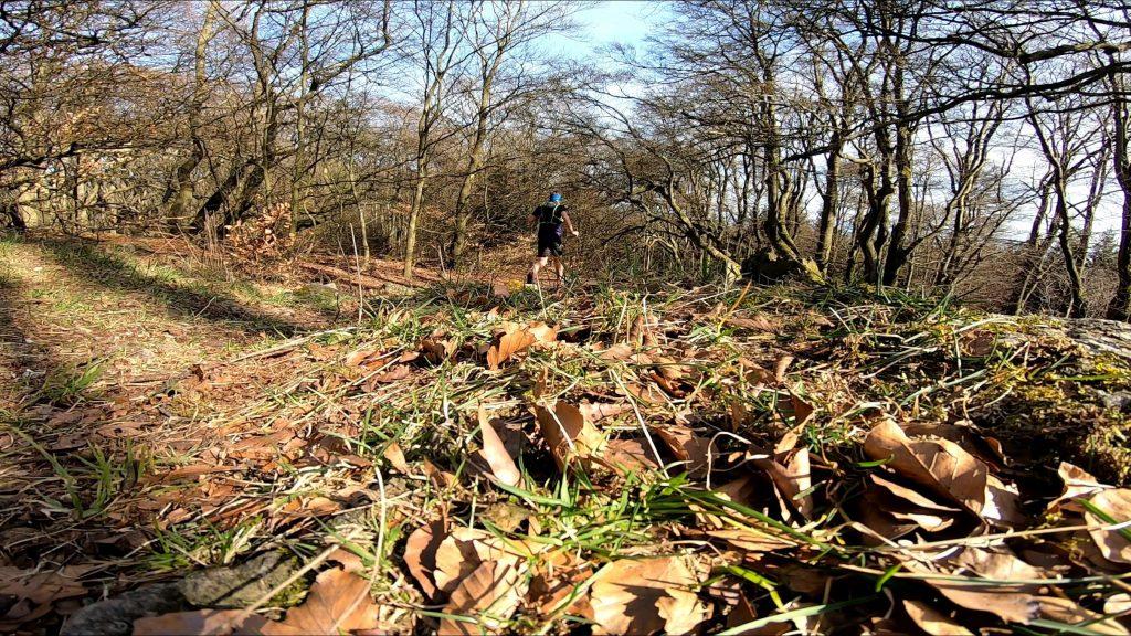 Trail hinuter von der Hohen Kanzel ins Theisstal