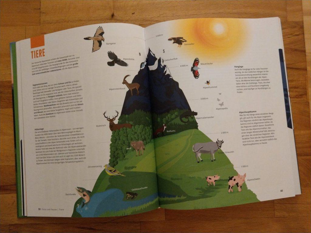 Die Tierwelt schön dargestellt im Alpenbuch